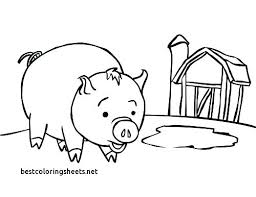 Animal Coloring Pages For Preschoolers Zoo Animals Coloring Book