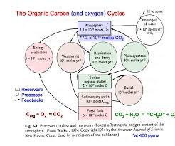 solved on the following page is a diagram (box model) of O2 Molecular Orbital Diagram at Oxygen Box Diagram