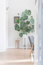 Feng Shui Circle Of Home