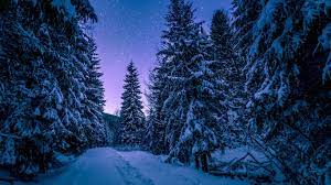 1366 X 768 Winter Wallpapers - Top Free ...