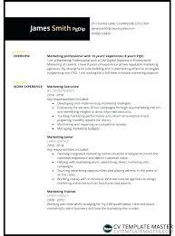 Professional Cv Free Download Professional Template Download Resume Free Word Cv Samples