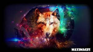 Abstract Wolf Wallpaper für Android ...