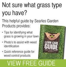 11 Best Lawn Care Guide Images Lawn Care Lawn Maintenance Plant