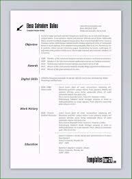 Template Word Doc Resume Template Resume Sample Word Doc