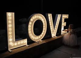 These are so cute for a wedding and make big statement! DIY LOVE marquee  letters