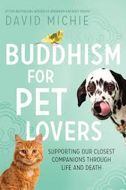 Image result for buddhism for pet lovers