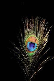 Blue Iphone Krishna Black Wallpaper ...