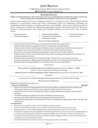 Data Analyst Cv Sample Free Resumes Tips