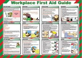 Free Printable Cpr Chart Free Printable First Aid Guide First Aid Poster First Aid