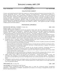 Example Product Manager Resume Sample And Executive Business Job