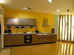 High Gloss Kitchen Cabinets The Best Of High Gloss Kitchen Cabinets New Home Designs