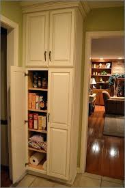kitchens cabinets pantry cabinet large size of standing kitchen cabinets food pantry cabinet kitchen pantries white pantry cabinet arcadia