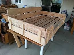 dog bunk beds plans bed ideas diy