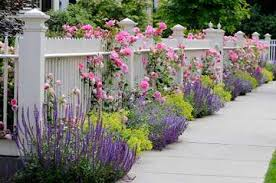 Small Picture Best of Cool Rose Garden Design Layout Excellent