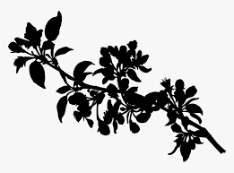 branch tree leaves silhouette hd png