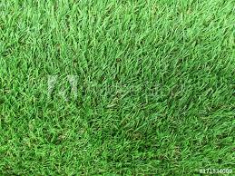 fake grass texture. Artificial Grass Texture Fake