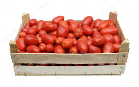 wooden crate full of tomatoes stock photo