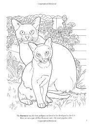 Small Picture Burmese Animal Coloring Pages nebulosabarcom