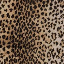 print gift wrap leopard print linework
