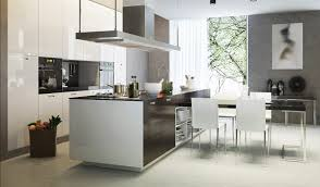 Two Tone Contemporary Kitchen Graber Cabinets