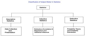 business statistics assignment help business statistics homework  business statistics assignment help