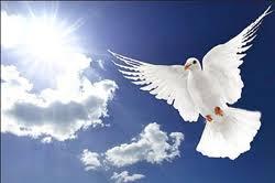 Afbeeldingsresultaat voor afbeelding engel gabriel