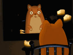 cat looking in mirror gif. animation cat looking in mirror gif