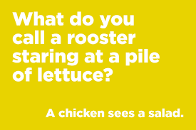 what do you call a rooster staring at a pile of lettuce