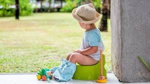 How To Potty Train A Boy A Step By Step Guide With Tips