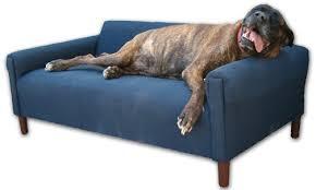 dog furniture pet furniture pet furniture dog furniture dog sofas pet sofa