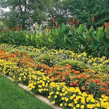 design a garden. Unique Garden GardenBold_Four Layer Autumn Colored Flower Border To Design A Garden G