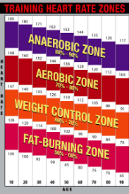 Training Heart Rate Zones Chart Bright Poster