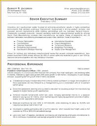 Executive Resumes Templates Inspiration Senior Manager Resume Template Construction Management Resume