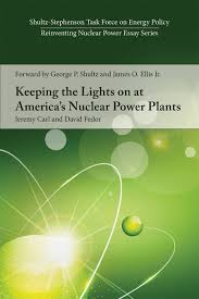 reinventing nuclear power institution essay series