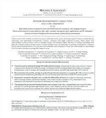 Ceo Resume Template Best Resume Ceo Cv Sample Uk 70607736259 Ceo