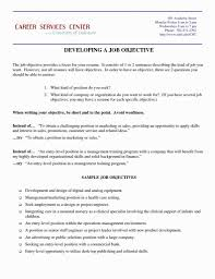 Job Objectives Customer Service Resume Objective 650 841 Resume Example