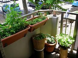 Small Picture Apartment Patio Garden Cute Garden Boxes Casasnap Source