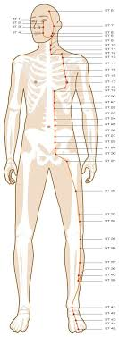 Chinese Cupping Points Chart Best Picture Of Chart