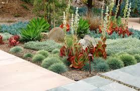 desert landscaping ideas plants desert garden ideas d97