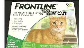 Frontline Plus For Cats Ingredients Bodrumnakliyat Co