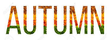 Autumn Word Is Written With Leaves White Isolated Background, Banner For Printing, Creative Illustration Autumn Colored Leaves. Stock Photo, Picture And Royalty Free Image. Image 90134311.
