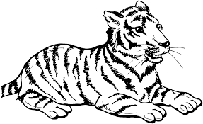 Small Picture Best Tiger Coloring Pages Best Gallery Colorin 654 Unknown