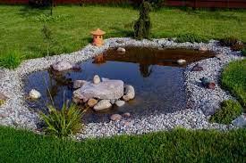 15 small backyard pond ideas water