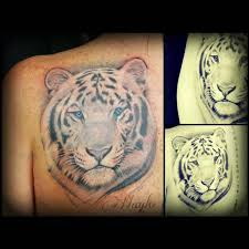 white tiger with blue eyes tattoo. Brilliant Eyes Haylo  White Tiger With Blue Eyes And With Blue Eyes Tattoo R