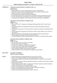 Training Development Coordinator Resume Samples Velvet Jobs