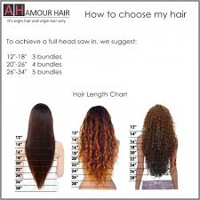 Hair Length Inches Chart Sbiroregon Org