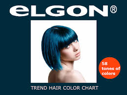 Elgon Professional Hair Color Chart Instructions