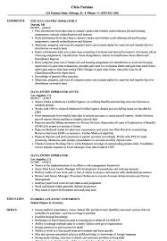 Data Entry Operator Resume Examples Templates Template Best And Cv
