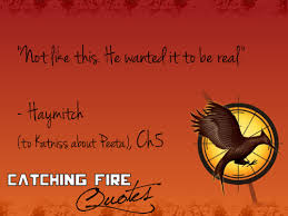 Fire Quotes Classy Catching Fire Images Catching Fire Quotes 4848 Wallpaper And