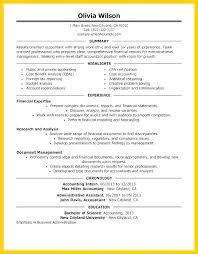 Staff Accountant Resume Samples Resume Accountant Sample Joefitnessstore Com
